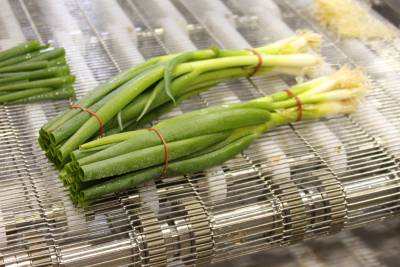 Spring Onion Cut by Water Jet Food Cutting System
