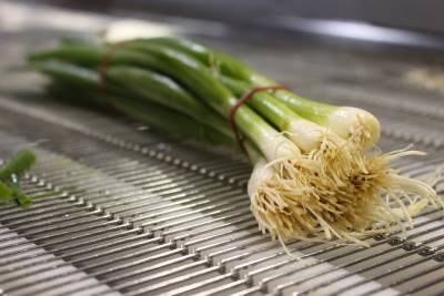 Spring Onion cut by water