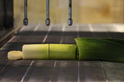 waterjet cut leek